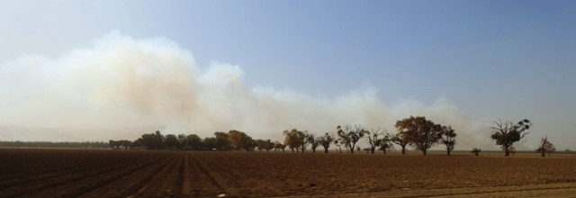 Fire, California, Smoke, Wind, Central Valley, Bad Air Quality