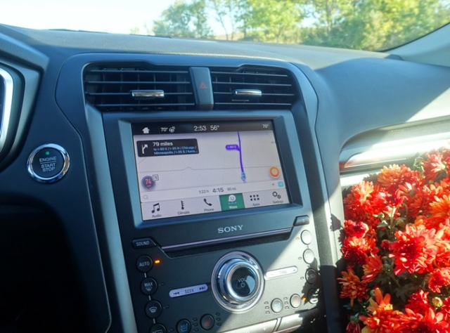 mum flowers, car display, hybrid, Ford Fusion