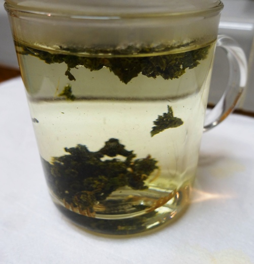 milk oolong, Jin Xuan Tea, tea, brewing tea