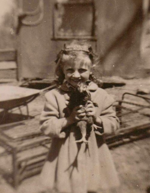 Girl holding chicken, barnyard, fowl, Iowa farm
