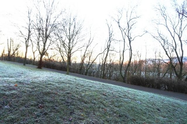 frost, grass, germany, cold weather