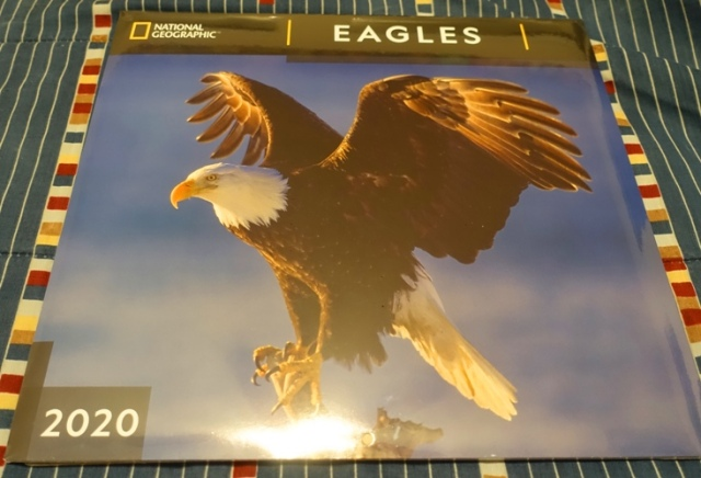 National Geographic Eagle Calendar, 2020 Calendar