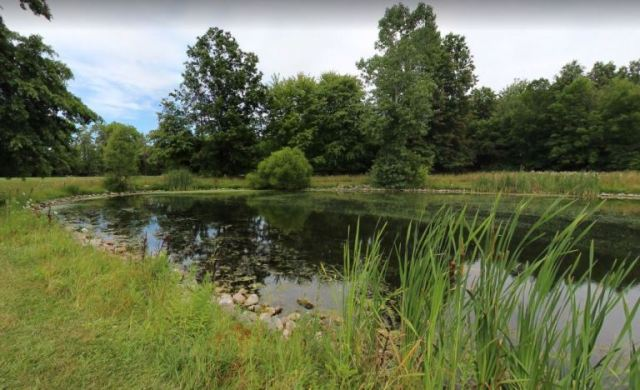 carlisle reservation, Ohio, Duck Pond, Google Street View