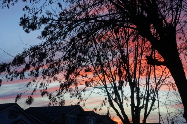 pink sunset, silhoute, roofs, california sunset