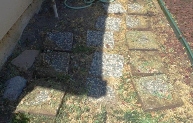 side yard, stepping stones. yard work