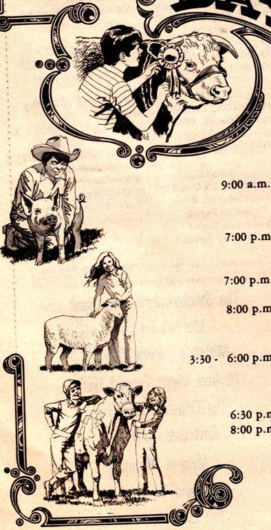 county fair, exhibits, sheep, cows, 4-H