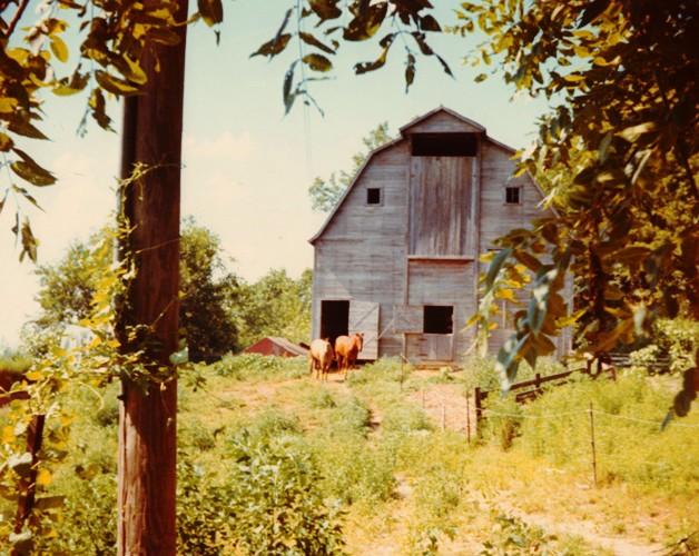Coin Barn, Tight Row, Iowa Barn