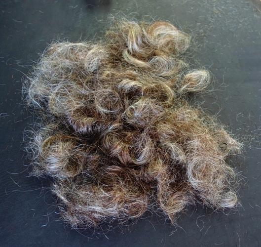 covid hair, haircut, stylist, hair salon, long hair, wavy hair, curles