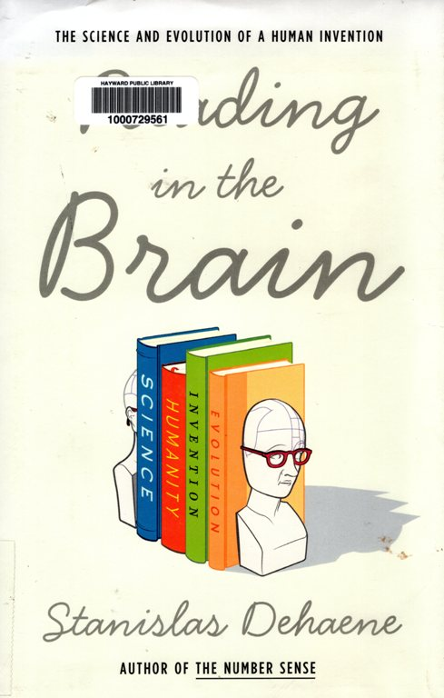 reading, brain, book