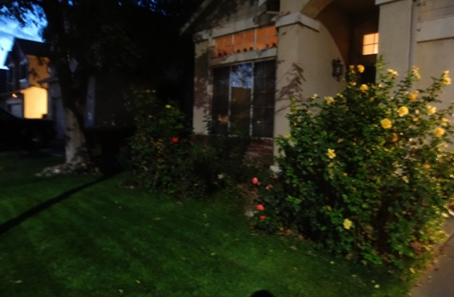 Mowing, tall grass, yardwork, Mowing after dark