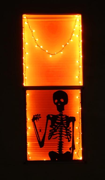 Halloween, skeleton display, skeleton window