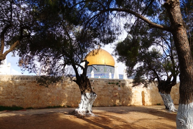 temple mount, platform wall, dome of the rock