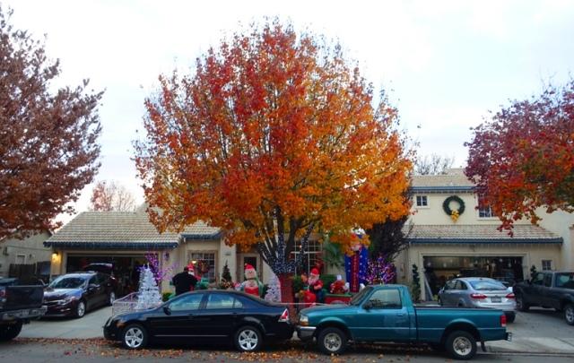 best neighborhood christmas decorations, autumn