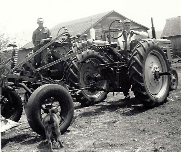 dog, farm equipment, tires, tractor, farm