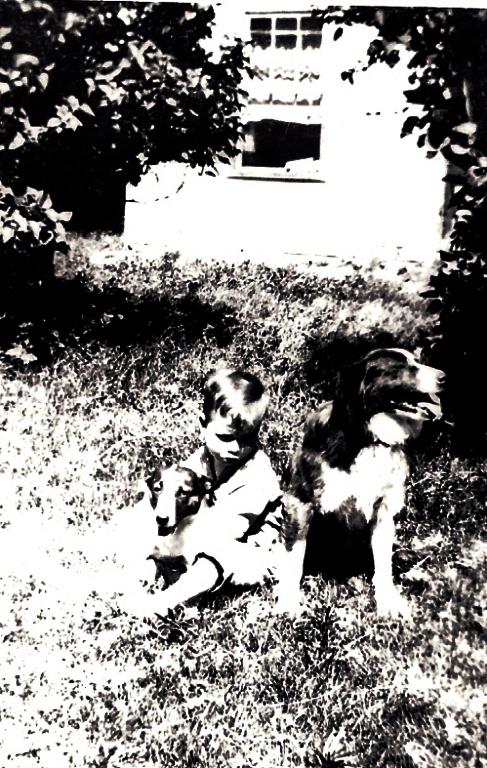 Hotchkiss, dogs, farm house
