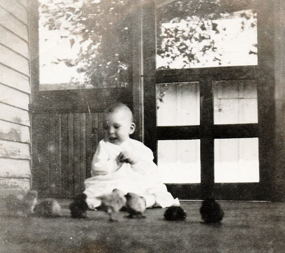 baby, chicks, chicken, old-time photography, porch