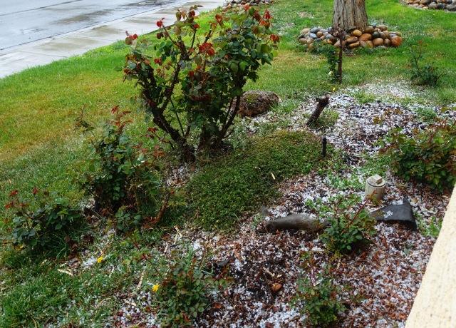 california thunderstorm, hail, rain, storm, tiny hail