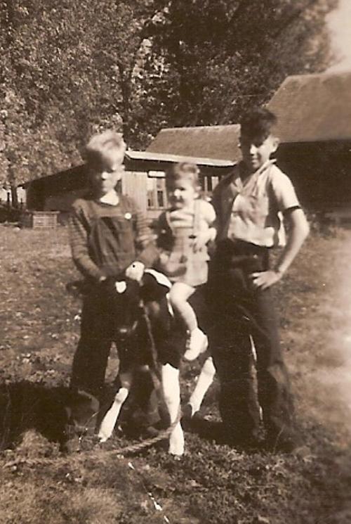 Cow, farm, mom, little girl, Iowa