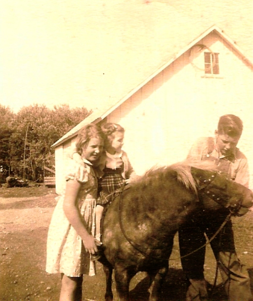 riding horse, little girl, farm, iowa