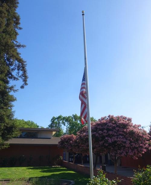 Library, trees, flag, half staff