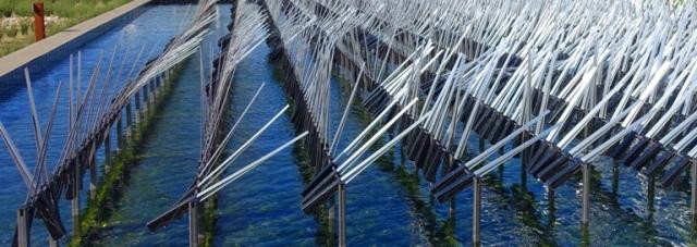 Ned Kahn, art, sensor, wind, environment