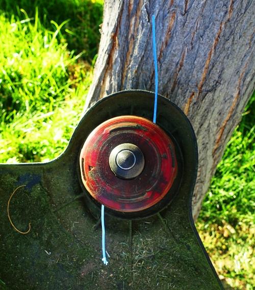 string trimmer, electric, yard work, lawn,