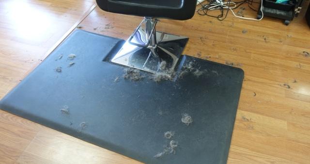 hair salon, hair trimmings, hair cut